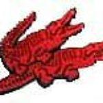 Foto del profilo di coccodrillo